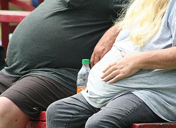Two Obese People Sitting On A Bench